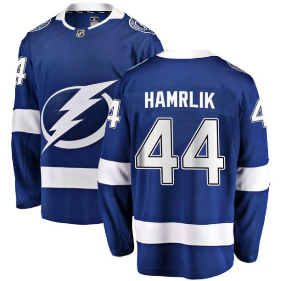 Roman Hamrlik Tampa Bay Lightning Youth Breakaway Home Fanatics Branded Jersey - Blue